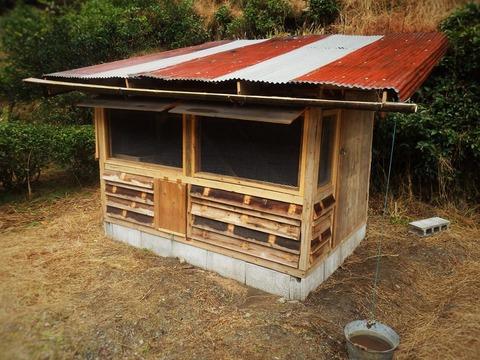 鶏小屋自作