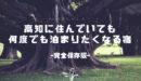 高知県民イチオシ!高知で宿泊するなら絶対泊まってほしいおすすめの宿を厳選!【保存版】