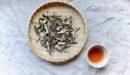 クロモジ茶とはどんなお茶?クロモジ茶の限定販売はじめます